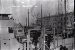 19) Акула в Ревеле, 1915 год