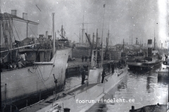 20) Акула в Ревеле, 1915 год