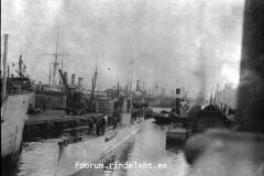 21) Акула в Ревеле, 1915 год