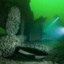 Фото 6. Акула на дне Финского залива, весна 2018 года.
